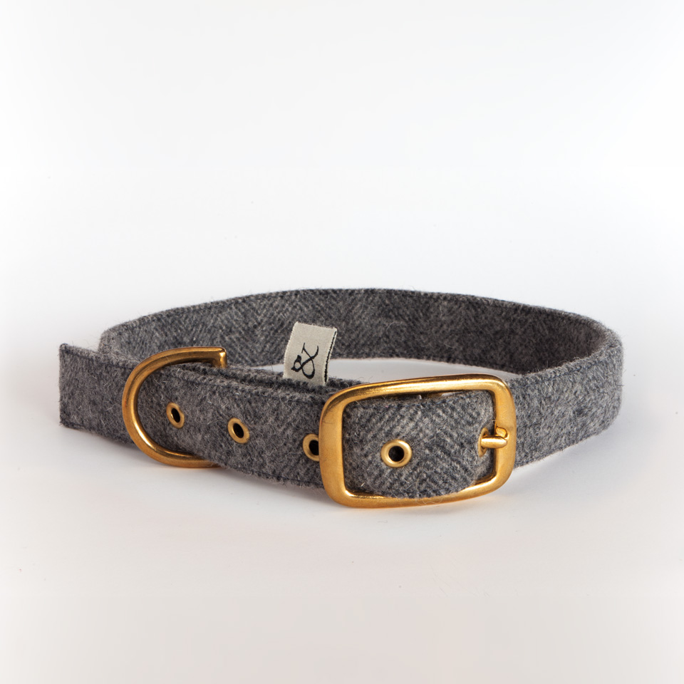 Dog Collar Urban Wool