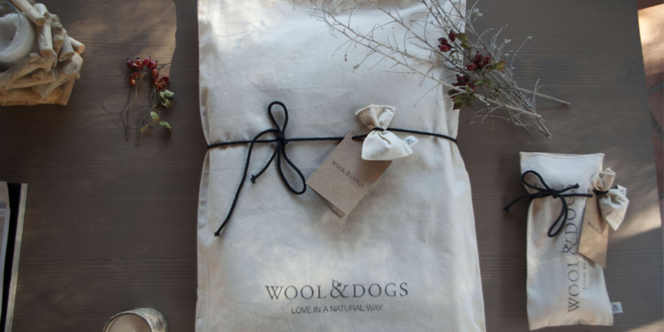 Ecological Dog Gift